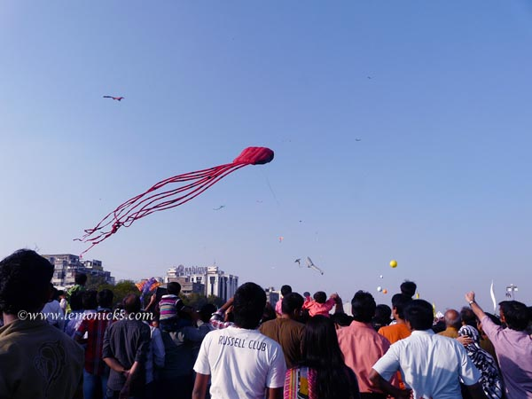 kite festival @lemonicks.com