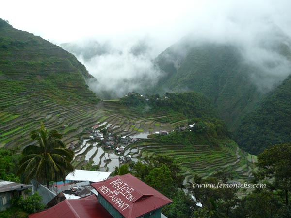 Rice terraces Batad @lemonicks.com