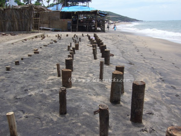 Goa beach @lemonicks.com