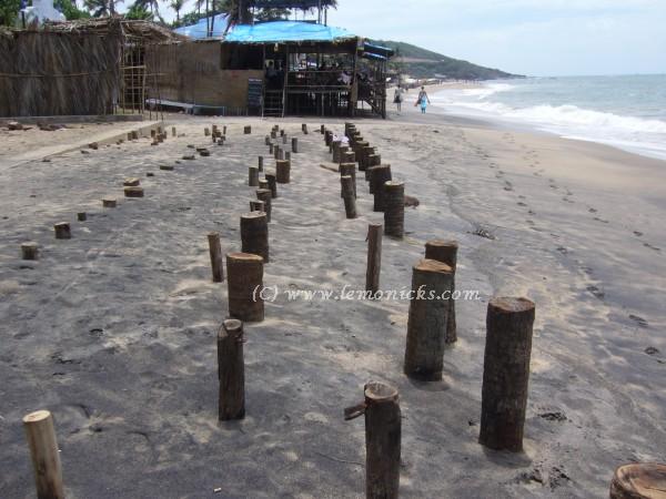 Goa beach @lemonicks.com
