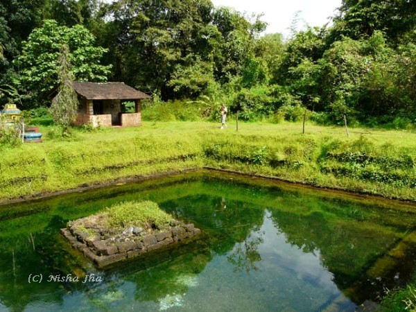 bubbling lake goa @lemonicks.com