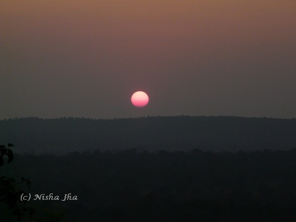 A Quiet Evening in Kanha