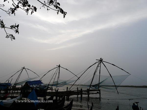 kerala chinese fishing net @lemonicks.com