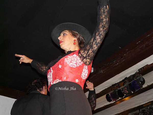 flamenco dance @lemonicks.com