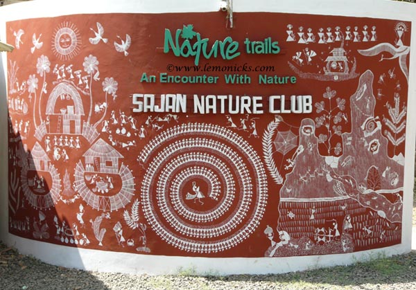 sajan nature club @lemonicks.com