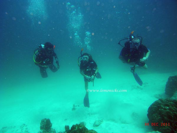 scuba diving phuket @lemonicks.com
