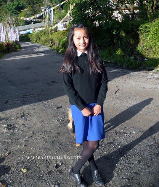 Sikkim@lemonicks.com