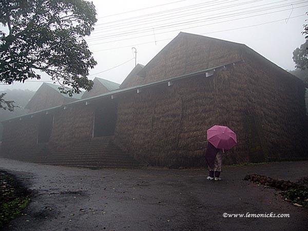 woman with umbrella @lemonicks.com
