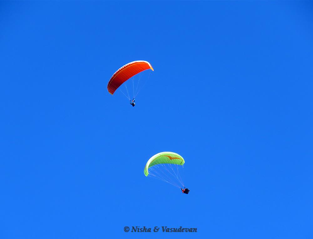 paragliding in austria @lemonicks.com